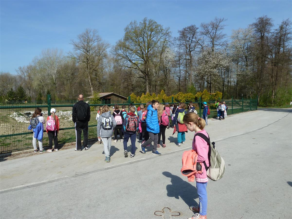 2017_04_31_sportni-15