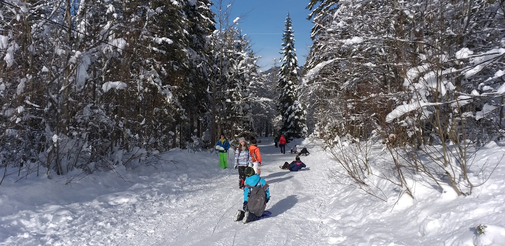 2019_01_26_planinski_izlet_tamar-39