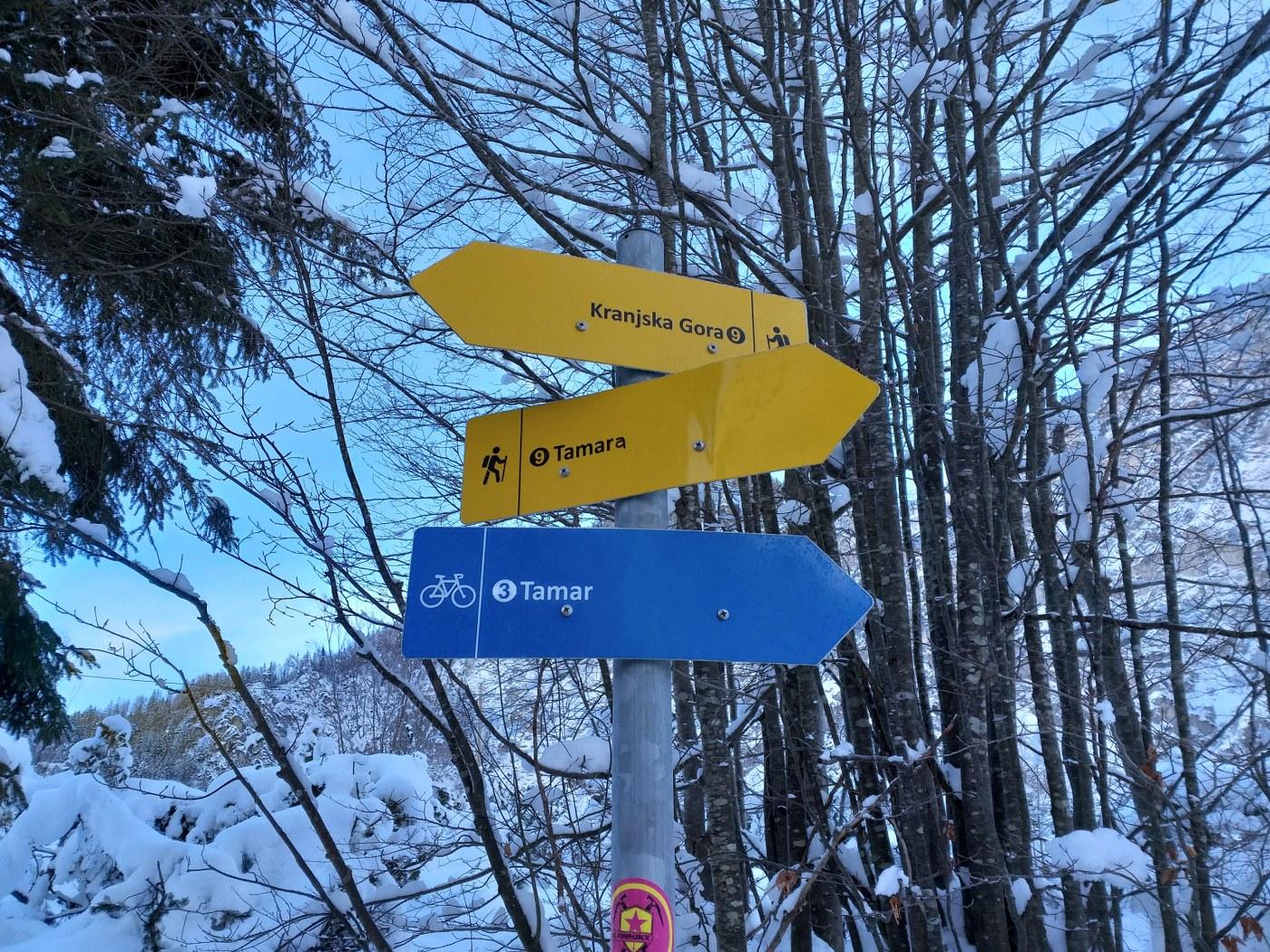2019_01_26_planinski_izlet_tamar-8